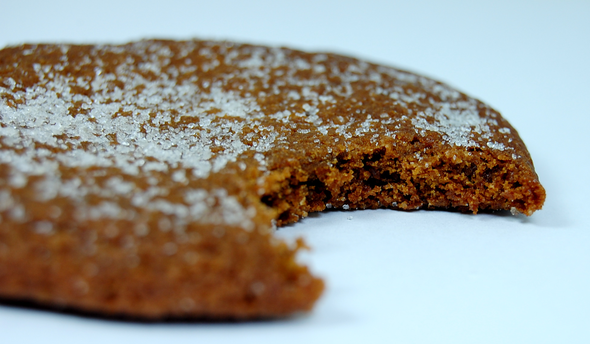 Organica Ginger Cookie - Bite
