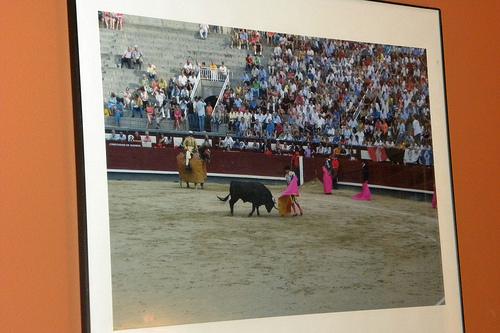 Spanish Bull Fight