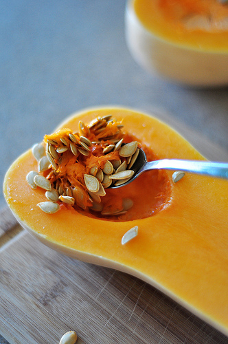 Baby Food: Butternut Squash Puree