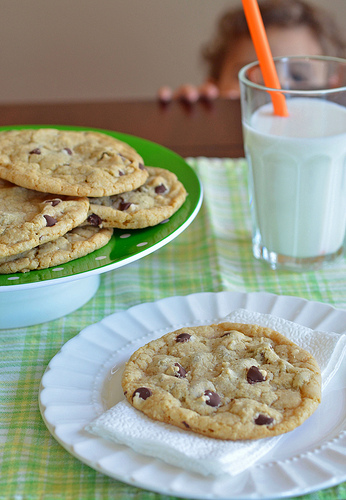 Big Chewy Chocolate Chip Cookie