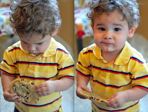 Judah Big and Chewy Chocolate Chip Cookie