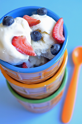 Rich Vanilla Frozen Yogurt