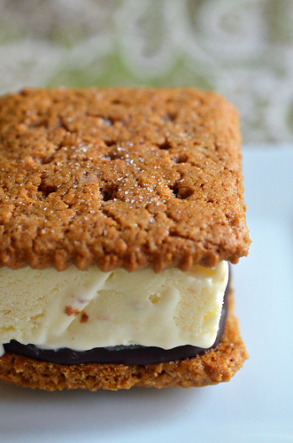Smores Ice Cream Sandwich