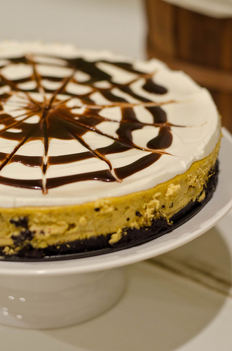 Mandy Pumpkin Cheesecake