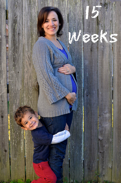 15 Weeks Preg2