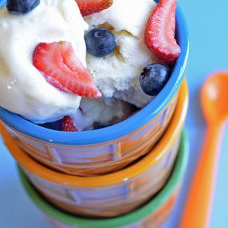 Rich Vanilla Frozen Yogurt