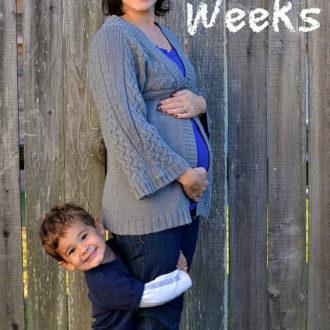 Saturday Seeds – Plus a Pregnancy Update