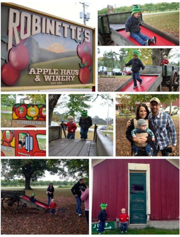 Established in 1911, Robinette's Apple Haus & Winery has grown to offer a year round bakery, gift house, winery, and a seasonal cider mill, apple orchards and other fall activities for the entire family in Michigan.
