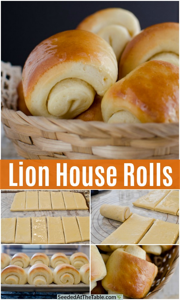 pinterest collage for lion house rolls