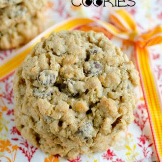Monster Cookies [No Flour!]