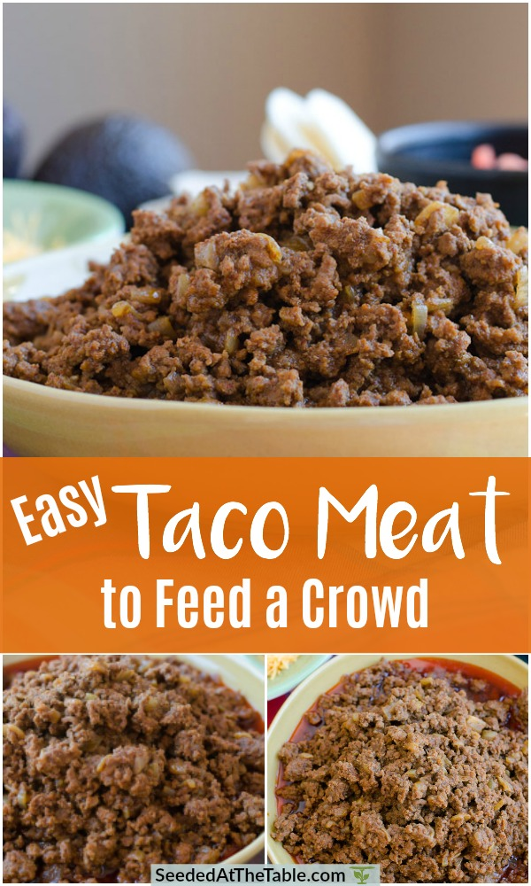 Collage of taco meat to feed a crowd.