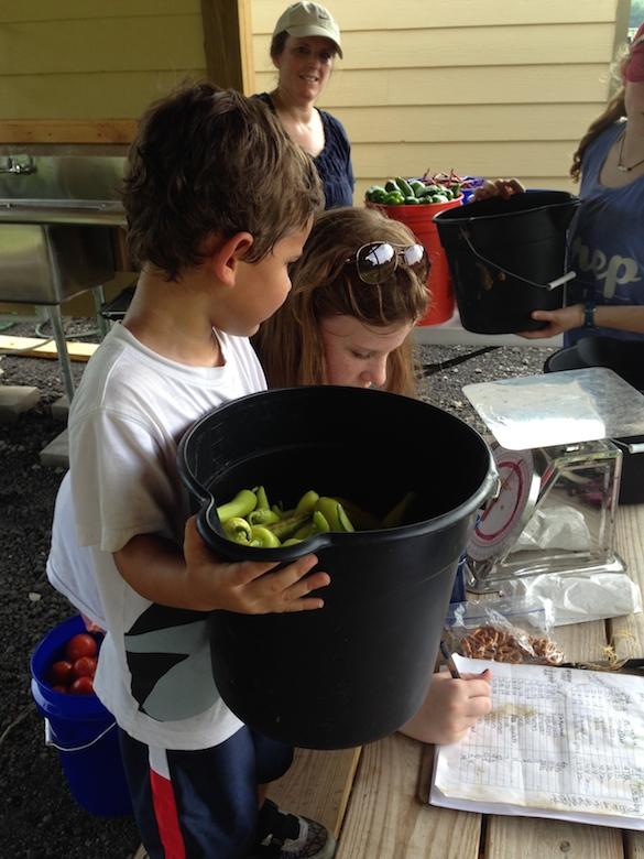 MADCAAP Helping Hands Garden