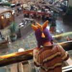 Family-Friendly Austin, TX: Omni Hotel Downtown Austin, TX