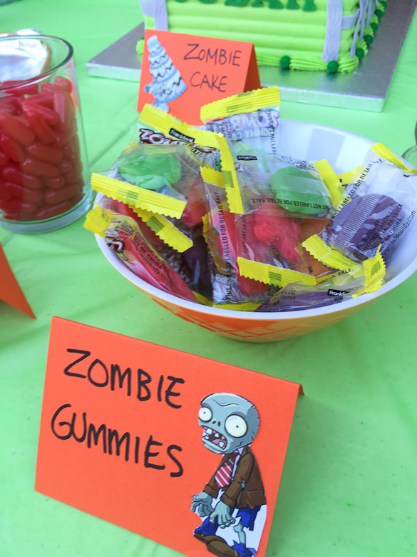 Plants vs Zombies Birthday Party Ideas - games, food and decorations for a PvZ birthday party.