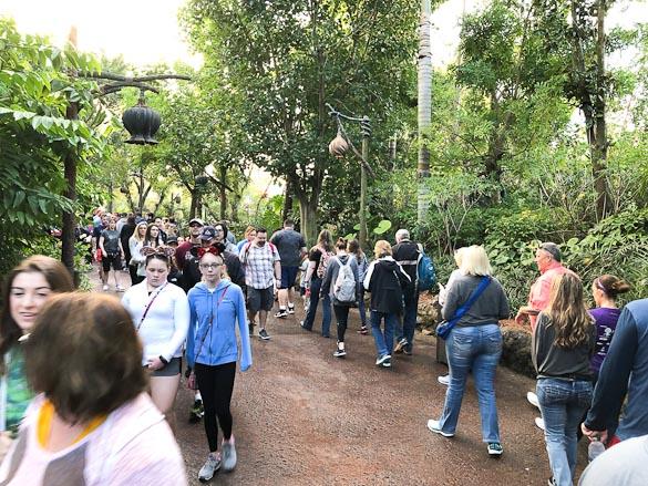 Crowd at Animal Kingdom heading to Flight of Passage.