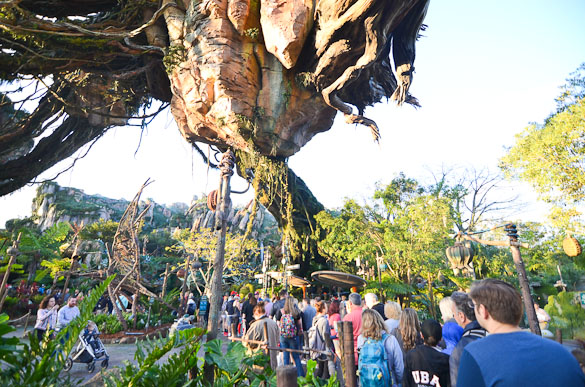 Crowd in Disney's Pandora.