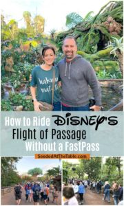 Disney couple at Pandora Flight of Passage ride.