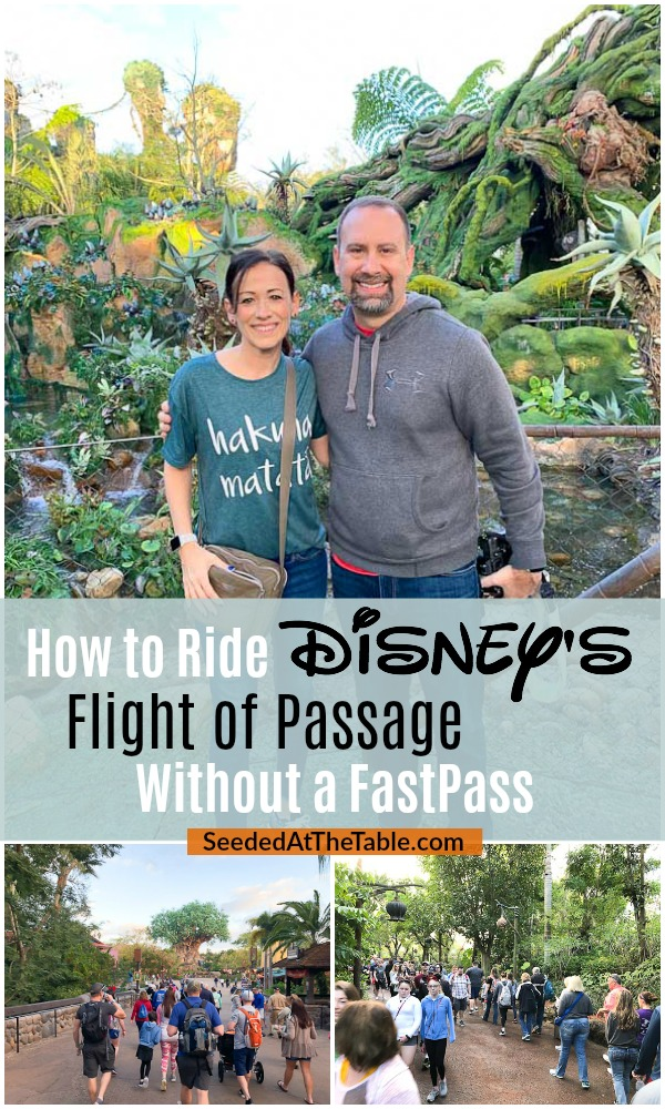 Tips for riding Avatar Flight of Passage at Disney World's Animal Kingdom without a FastPass and without standing in line for hours.  Pandora is a must-see attraction, and you can avoid the long wait for Flight of Passage with these few tricks.