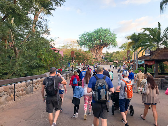 Crowd at Disney's Animal Kingdom in front of Tree of Life.