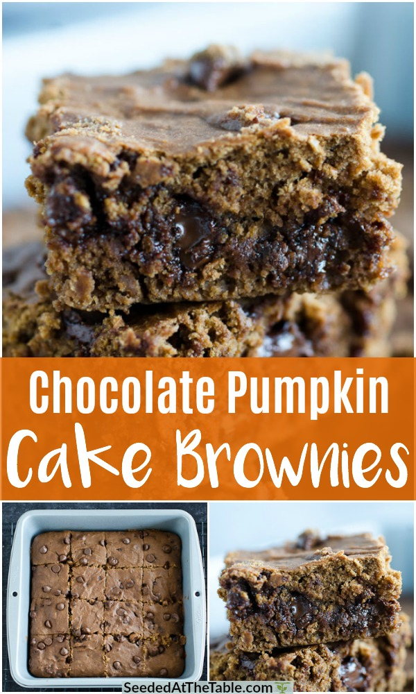 Our Chocolate Pumpkin Cake Brownies are studded with chocolate chips for fudgy bites of pumpkin squares.  If you love chocolate cake brownies, you will love this pumpkin spice version!