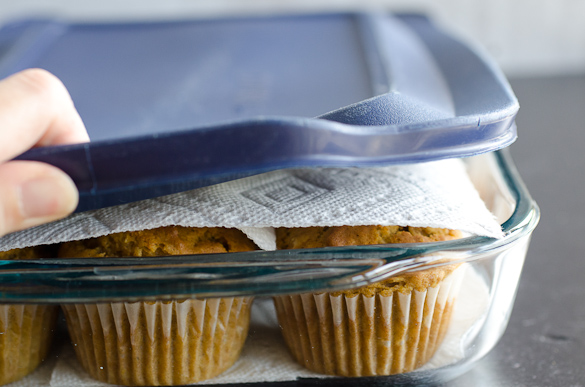 muffins stored with paper towels