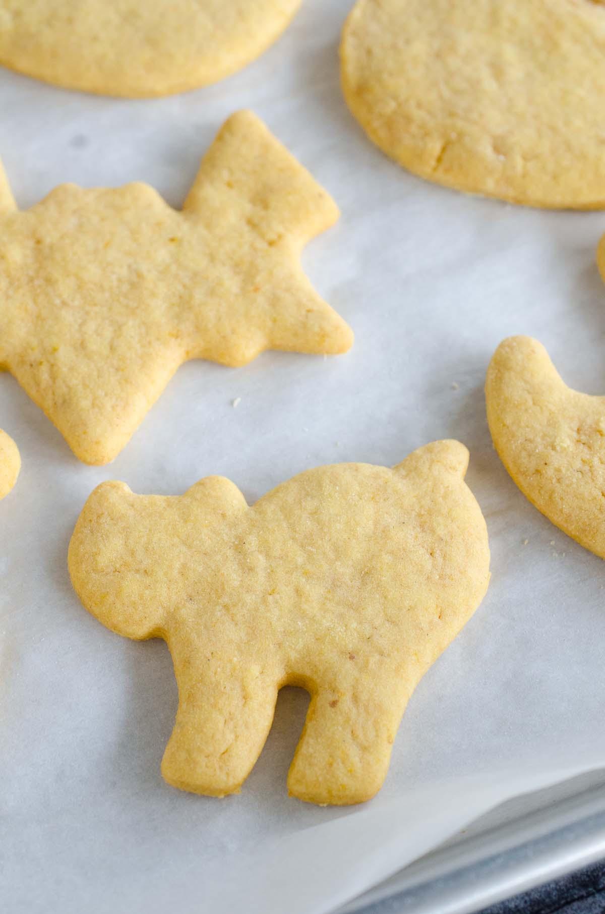 cat shaped pumpkin sugar cookie