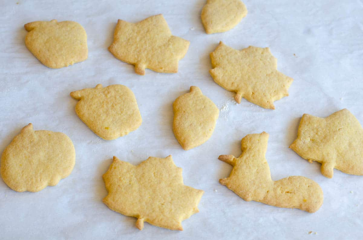 fall shaped cut out pumpkin cookies